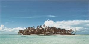 D-Elida Landscape 1